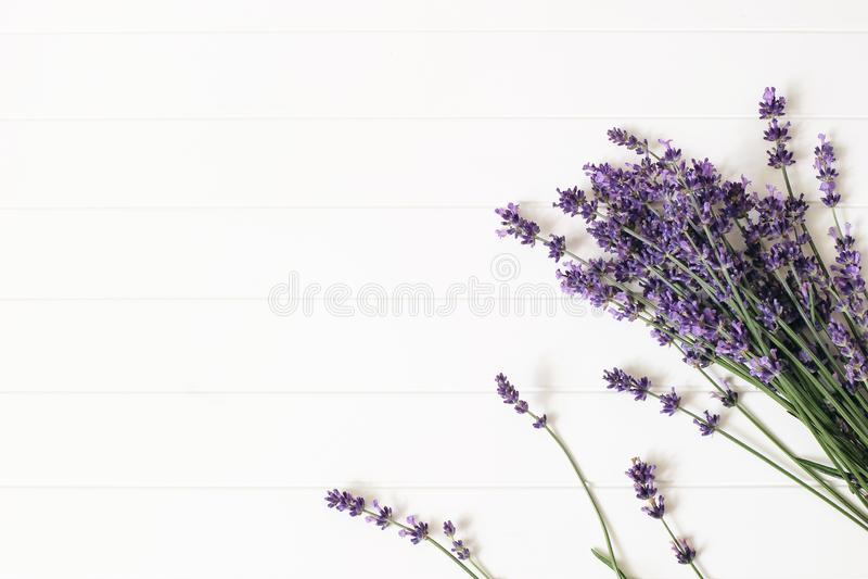 Ανθοδέσμη lavender των λουλουδιών στο άσπρο ξύλινο επιτραπέζιο υπόβαθρο Διακοσμητικό floral πλαίσιο, έμβλημα Ιστού με Lavandula στοκ φωτογραφία