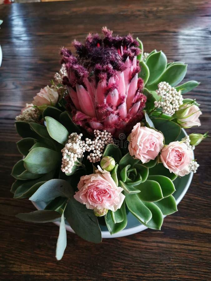 Ανθοδέσμη Protea στοκ εικόνα