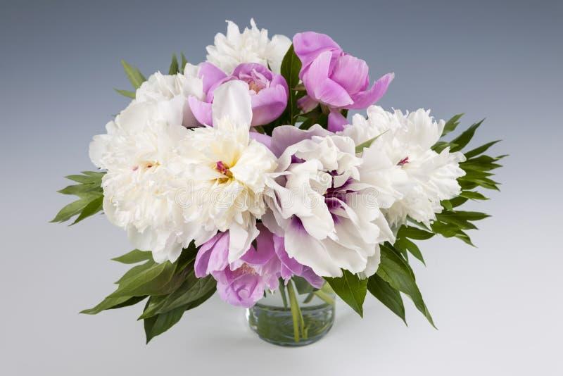 Ανθοδέσμη λουλουδιών Peony στοκ εικόνα