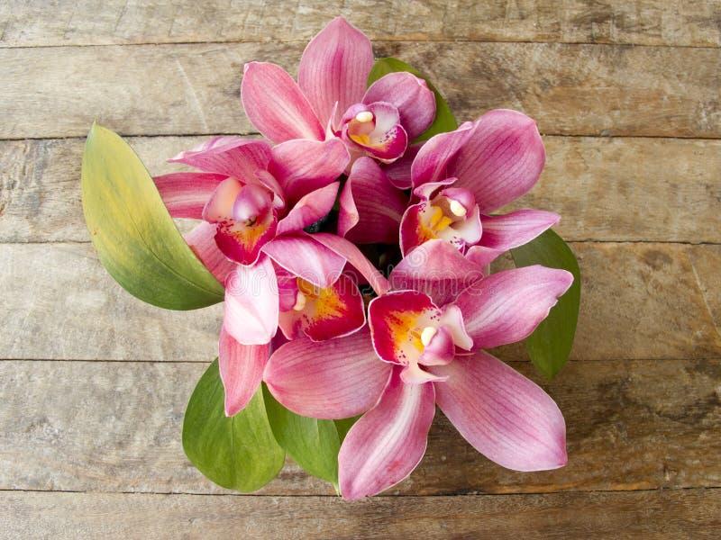 Ρόδινο orchid στο ξύλινο υπόβαθρο στοκ φωτογραφία με δικαίωμα ελεύθερης χρήσης