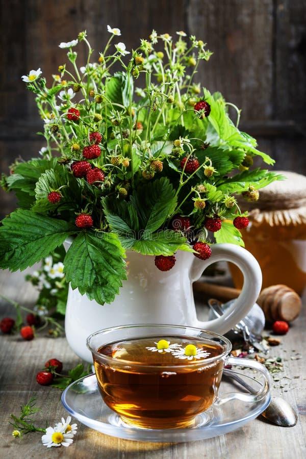 Ανθοδέσμη της άγριας φράουλας με το βοτανικά τσάι και το μέλι στοκ φωτογραφία