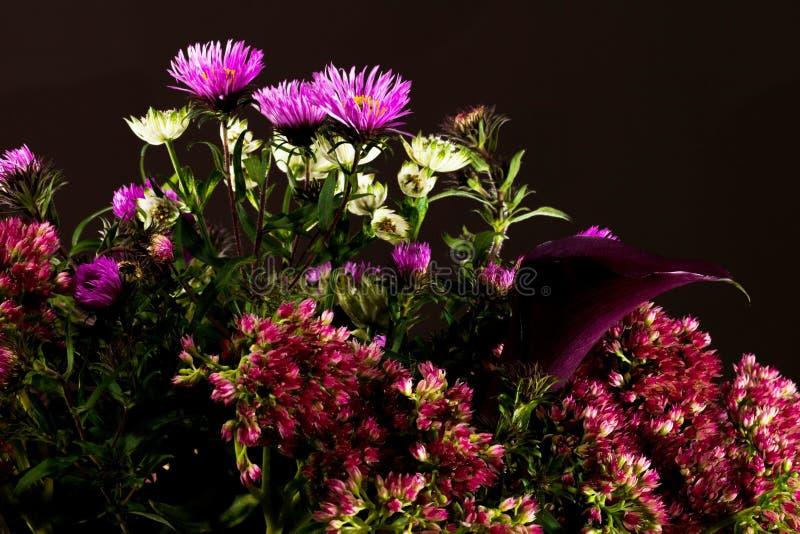 Ανθοδέσμη των άγριων λουλουδιών σε ένα σκοτεινό υπόβαθρο στοκ φωτογραφία