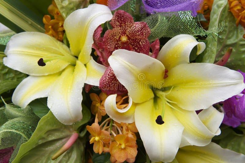 Ανθοδέσμη των ζωηρόχρωμων τροπικών λουλουδιών στοκ φωτογραφία