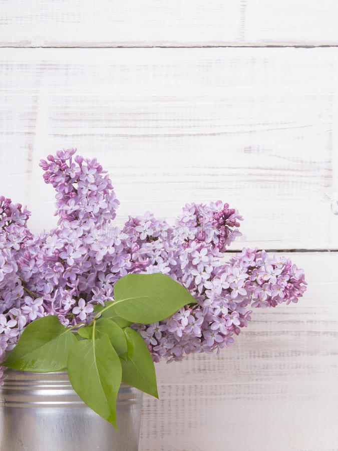 Ανθοδέσμη των ιωδών λουλουδιών στο άσπρο ξύλινο υπόβαθρο στοκ φωτογραφίες με δικαίωμα ελεύθερης χρήσης