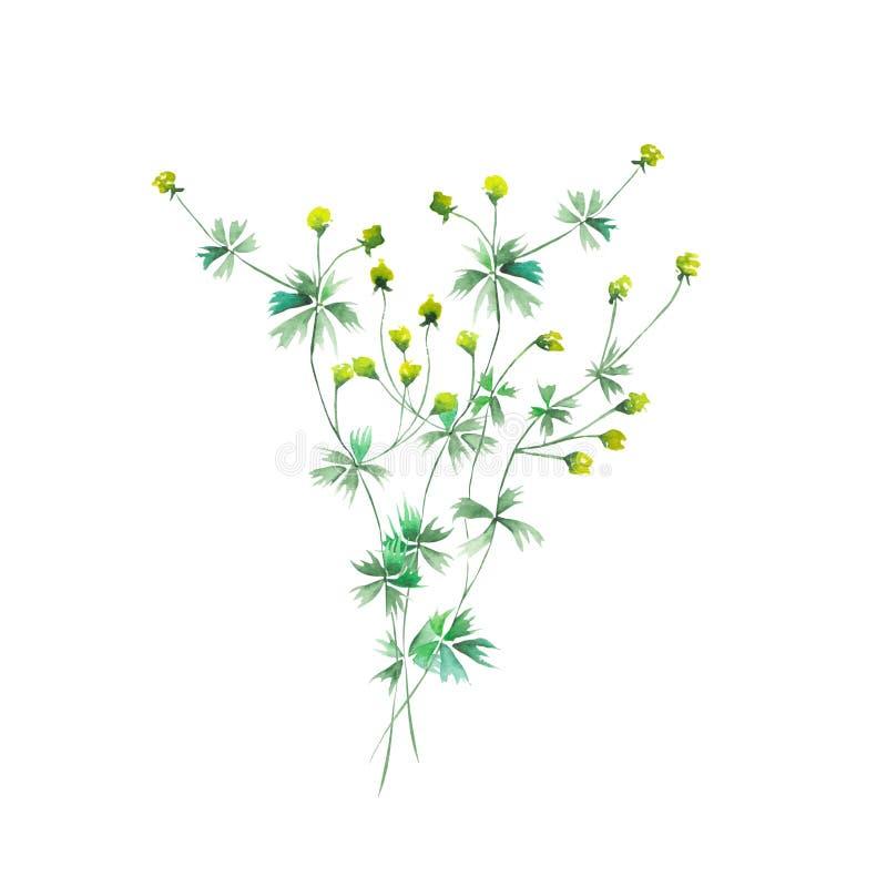 Ανθοδέσμη των κίτρινων wildflowers απεικόνιση αποθεμάτων