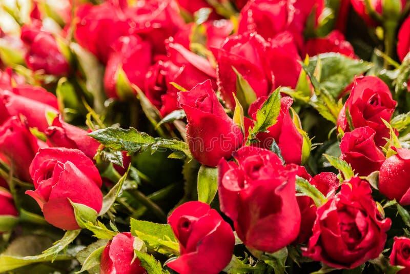 Ανθοδέσμη των ρυθμίσεων λουλουδιών για τη διακόσμηση στοκ εικόνες