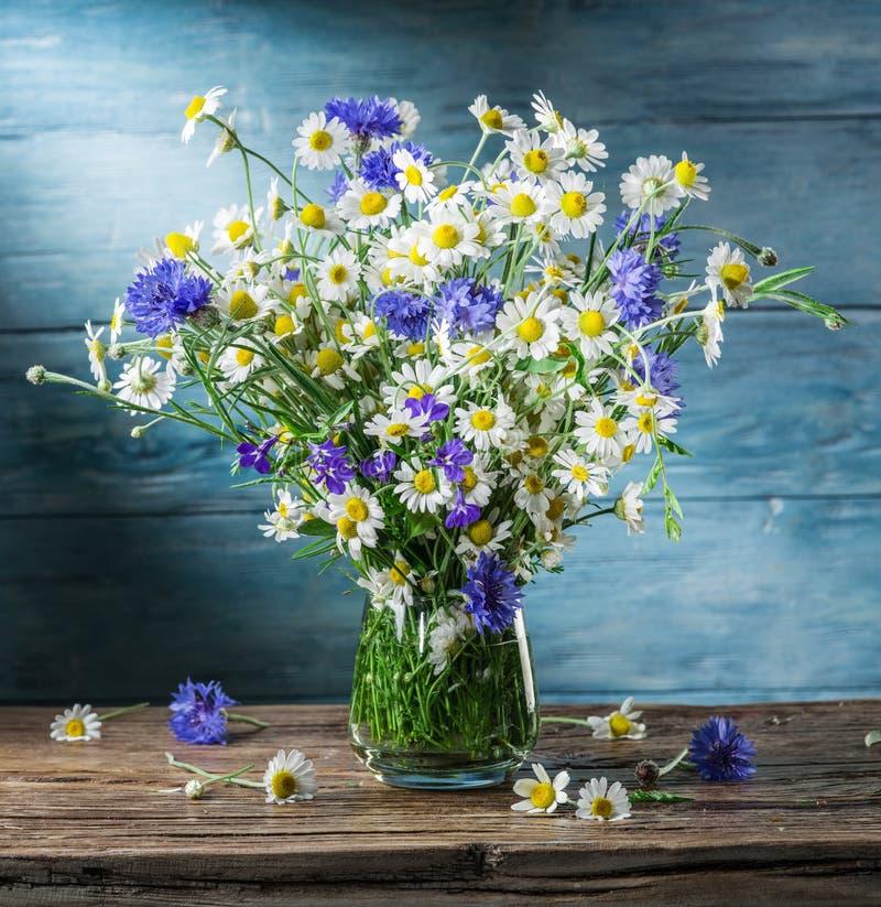 Ανθοδέσμη των chamomiles και των cornflowers στο βάζο στοκ εικόνα με δικαίωμα ελεύθερης χρήσης