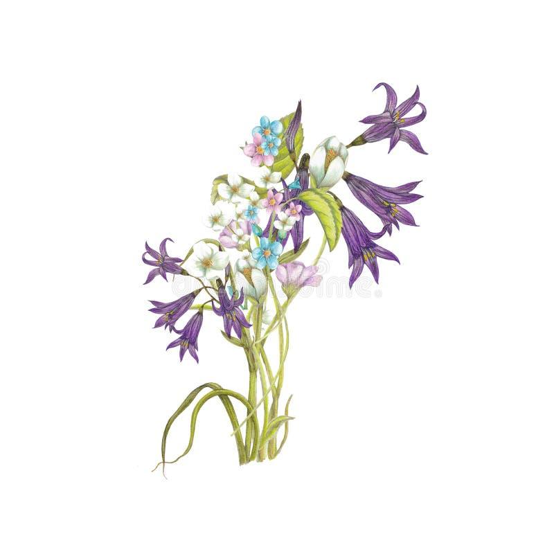 Ανθοδέσμη των wildflowers διανυσματική απεικόνιση