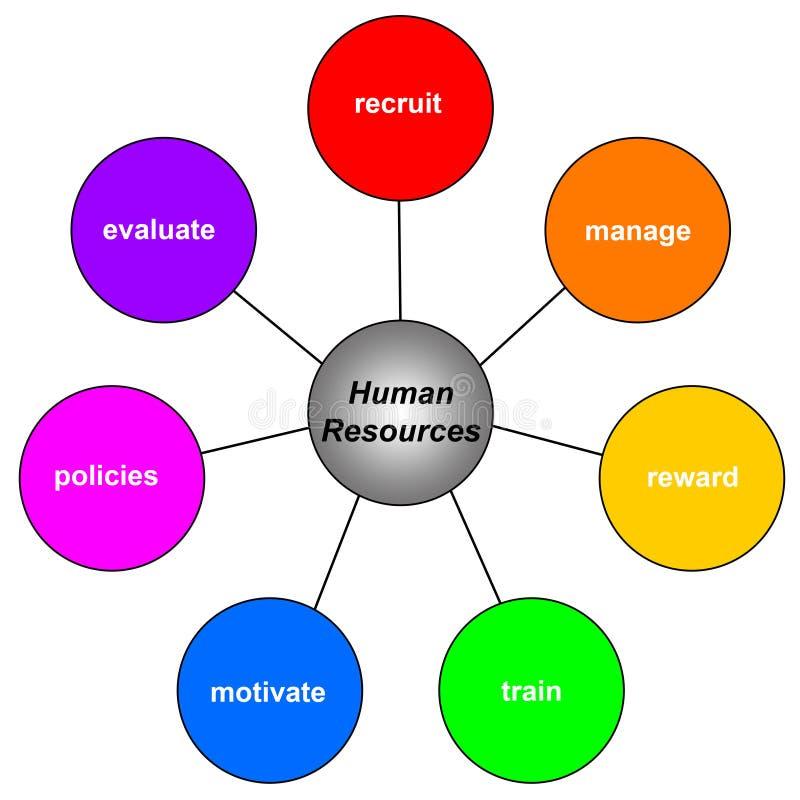 ανθρώπινα δυναμικά διανυσματική απεικόνιση