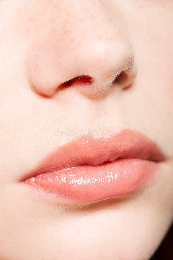 Ανθρώπινα μύτη και χείλια στοκ φωτογραφία
