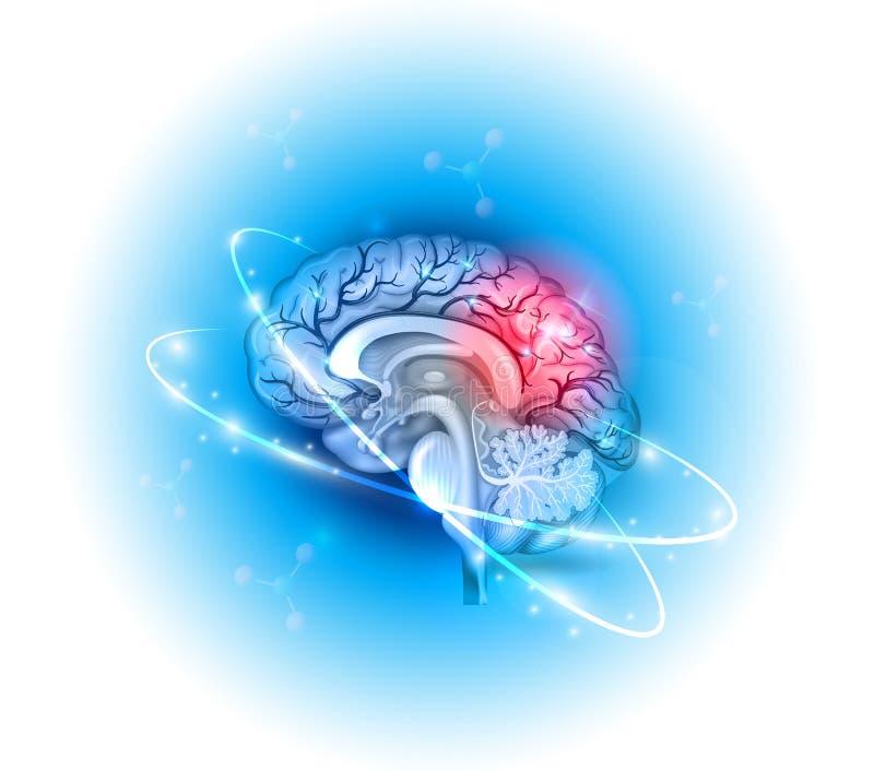 Ανθρώπινη επεξεργασία εγκεφάλου διανυσματική απεικόνιση