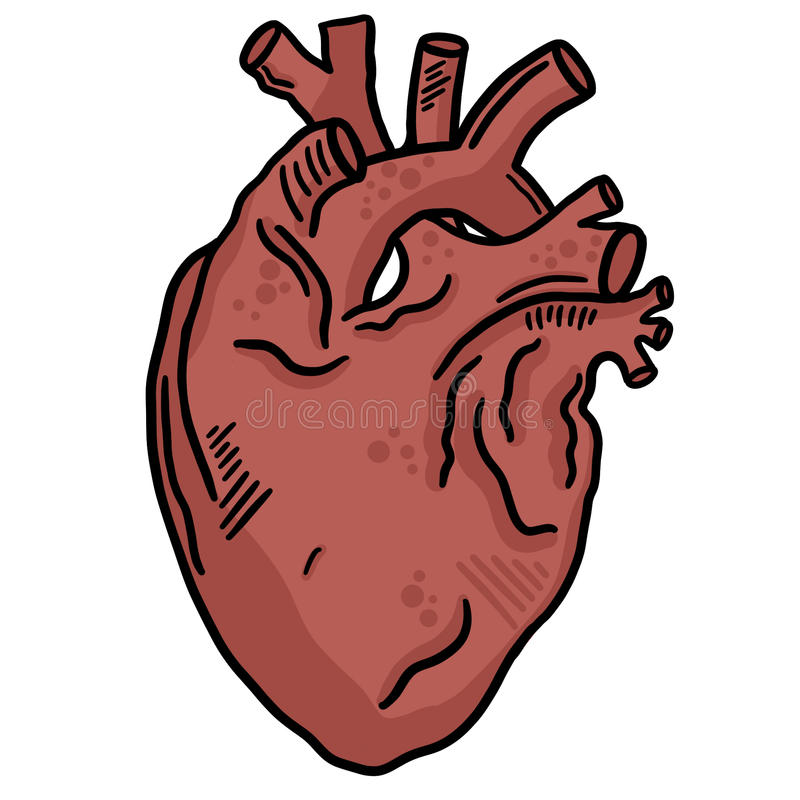 Ανθρώπινη καρδιών γραμμών τέχνη συνδετήρων απεικόνισης τέχνης διανυσματική στοκ εικόνα με δικαίωμα ελεύθερης χρήσης