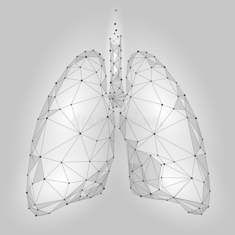 Ανθρώπινοι εσωτερικοί πνεύμονες οργάνων Χαμηλό πολυ σχέδιο τεχνολογίας Άσπρα γκρίζα polygonal συνδεδεμένα τρίγωνο σημεία χρώματος διανυσματική απεικόνιση