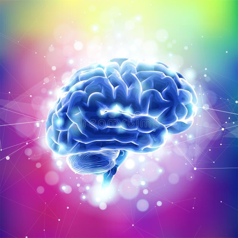 Ανθρώπινοι τομείς εγκεφάλου & πληροφοριών, νευρικά δίκτυα, ελεύθερη απεικόνιση δικαιώματος