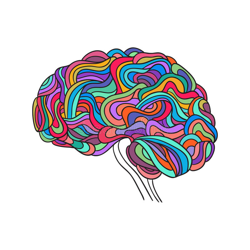 Ανθρώπινος εγκέφαλος, διάνυσμα ελεύθερη απεικόνιση δικαιώματος
