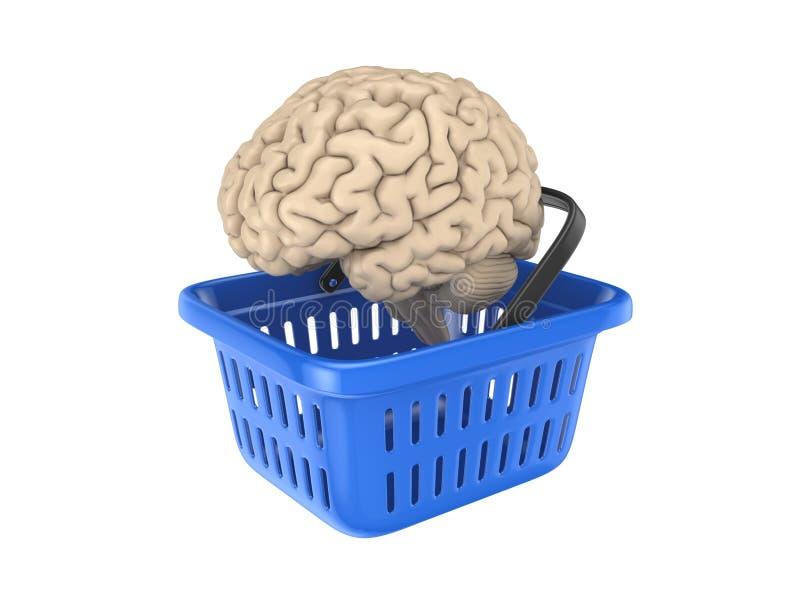 Ανθρώπινος εγκέφαλος στο μπλε καλάθι διανυσματική απεικόνιση