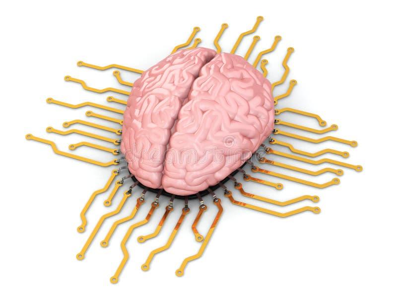 Ανθρώπινος εγκέφαλος ως τσιπ υπολογιστή. Έννοια της ΚΜΕ. απεικόνιση αποθεμάτων