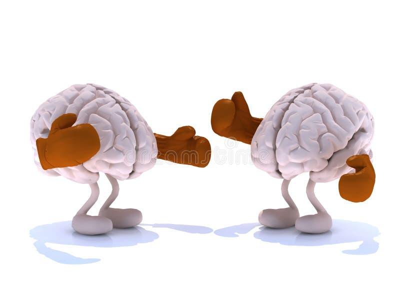 Ανθρώπινος εγκέφαλος δύο με τα εγκιβωτίζοντας γάντια σε μια πάλη διανυσματική απεικόνιση
