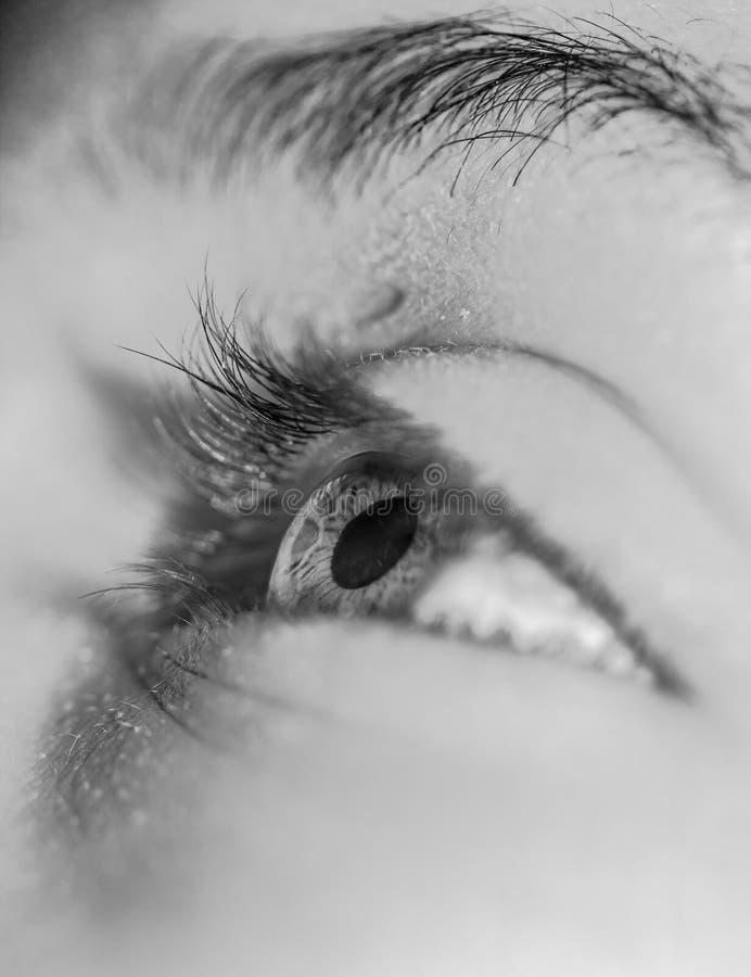Ανθρώπινο μάτι που ανατρέχει ως κινηματογράφηση σε πρώτο πλάνο στοκ εικόνες