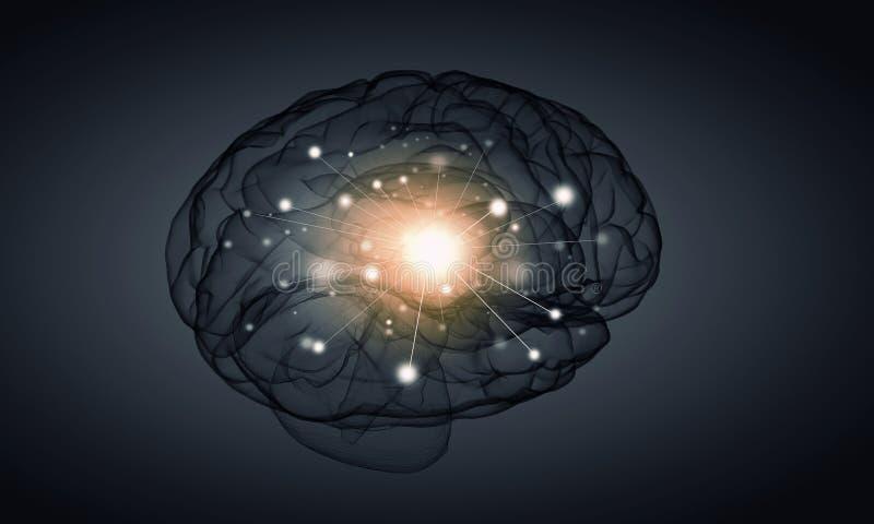 Ανθρώπινο μυαλό διανυσματική απεικόνιση