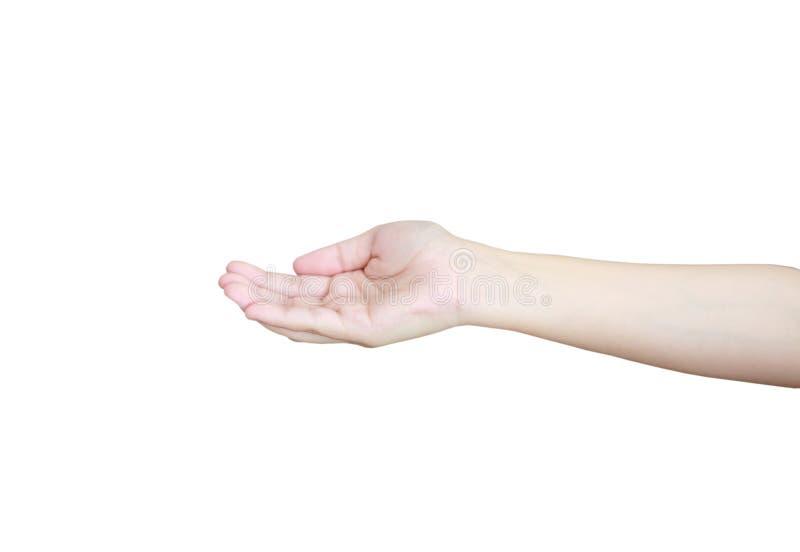 Ανοίξτε ένα χέρι γυναικών ` s, παλάμη που απομονώνεται επάνω στο λευκό στοκ εικόνα με δικαίωμα ελεύθερης χρήσης