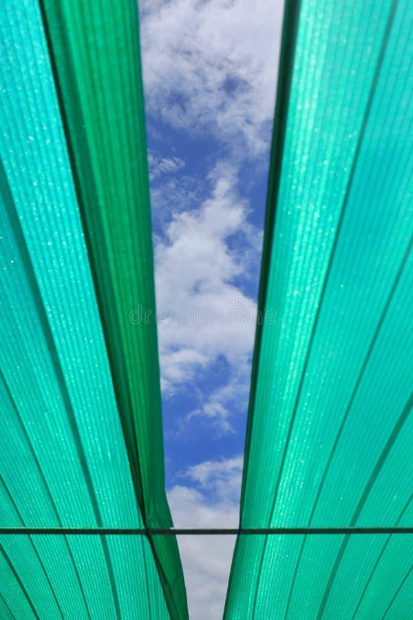 Ανοίξτε το μυαλό σας στις νέες δυνατότητες και η ζωή θα συνεχίσει την έννοια με το μπλε ουρανό κατευθείαν στη μέση της πράσινης σ στοκ φωτογραφία με δικαίωμα ελεύθερης χρήσης