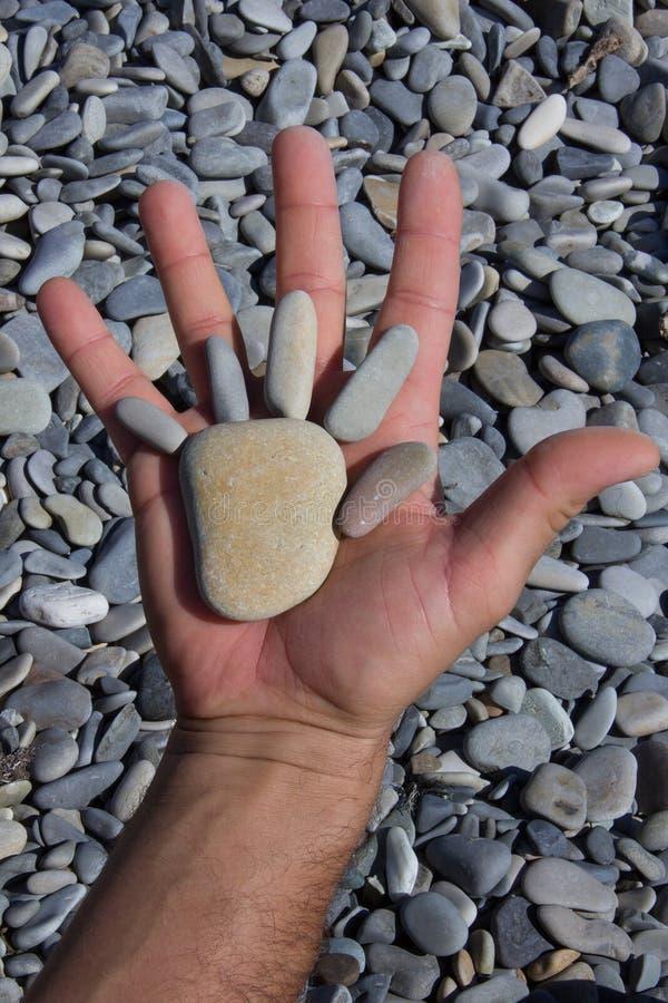 Ανοιγμένο αρσενικό χέρι που κρατά μια πλαστή παλάμη των πετρών θάλασσας στοκ εικόνα με δικαίωμα ελεύθερης χρήσης