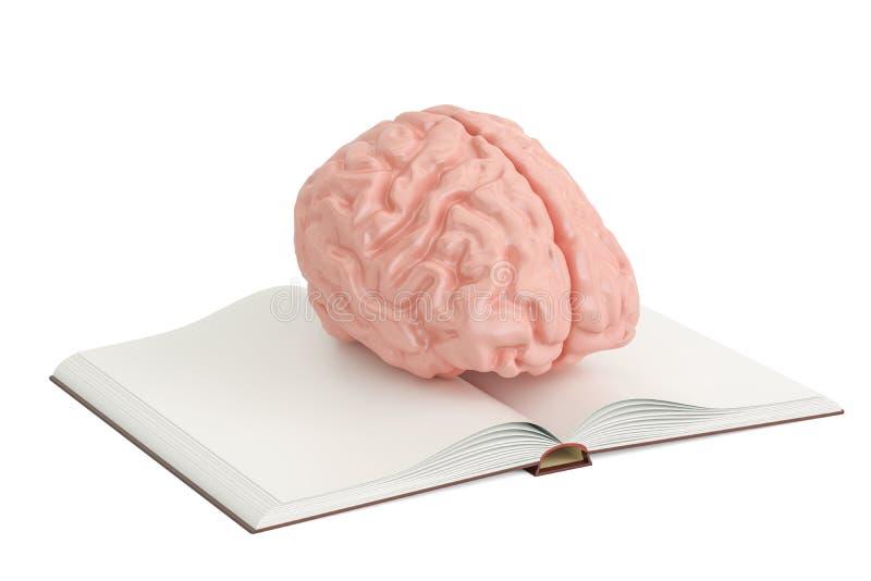 Ανοιγμένο κενό βιβλίο με τον ανθρώπινο εγκέφαλο, τρισδιάστατη απόδοση ελεύθερη απεικόνιση δικαιώματος