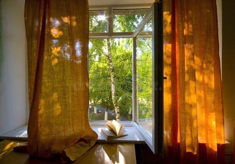 Ανοιγμένο πλαστικό παράθυρο στοκ εικόνα με δικαίωμα ελεύθερης χρήσης