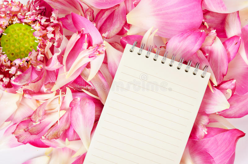 Ανοικτό κενό ημερολόγιο στο ανθίζοντας ρόδινο λουλούδι λωτού στοκ εικόνα με δικαίωμα ελεύθερης χρήσης