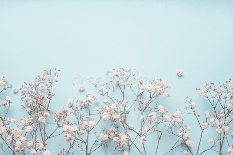 Ανοικτό μπλε floral σύνορα υποβάθρου με τα άσπρα λουλούδια Gypsophila Λουλούδια s-αναπνοής μωρών ` στοκ φωτογραφία