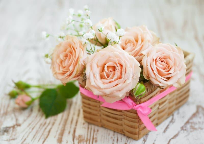 Ανοικτό ροζ τριαντάφυλλα στοκ εικόνα