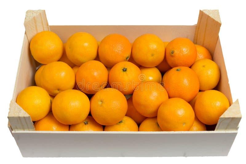 ανοιχτό tangerines ανασκόπησης λε& στοκ εικόνες