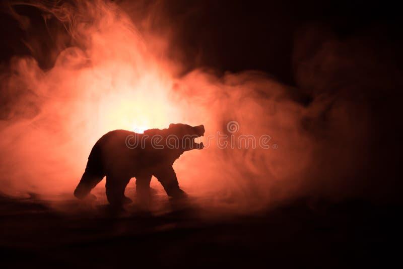 0 αντέξτε πίσω από το νεφελώδη ουρανό πυρκαγιάς Η σκιαγραφία μιας αρκούδας στο ομιχλώδες δασικό σκοτεινό υπόβαθρο Εκλεκτική εστία στοκ εικόνες με δικαίωμα ελεύθερης χρήσης