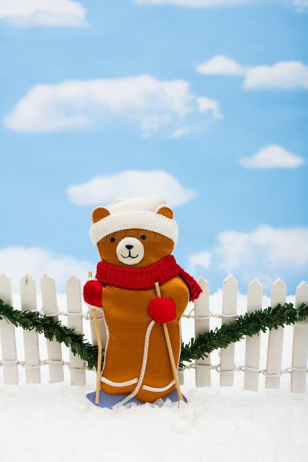 αντέξτε τα Χριστούγεννα στοκ φωτογραφίες με δικαίωμα ελεύθερης χρήσης