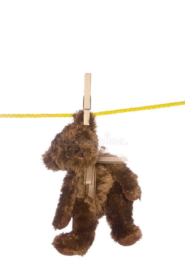 αντέξτε την ένωση σκοινιών για άπλωμα teddy στοκ εικόνες με δικαίωμα ελεύθερης χρήσης