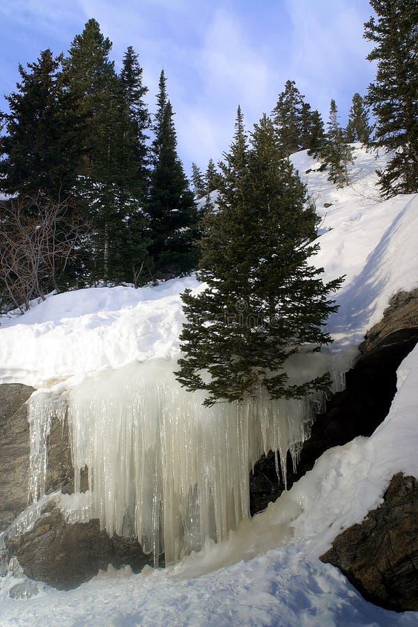 αντέξτε τη λίμνη πάγου πτώσε&om στοκ φωτογραφίες