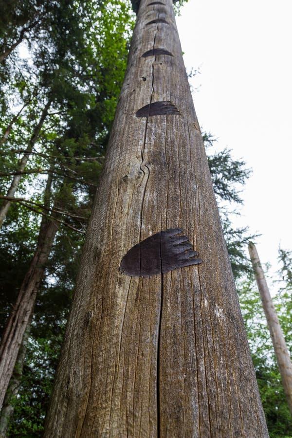 Αντέξτε τις τυπωμένες ύλες που καίγονται σε ξύλινο Πολωνό στοκ εικόνες