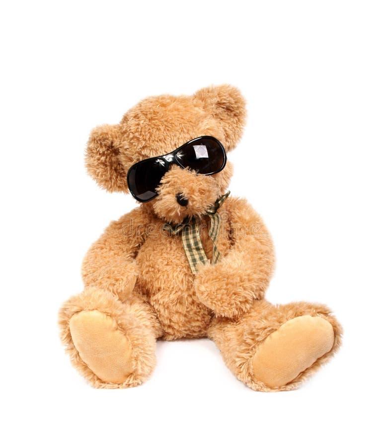 αντέξτε τον ήλιο γυαλιών teddy στοκ εικόνα με δικαίωμα ελεύθερης χρήσης