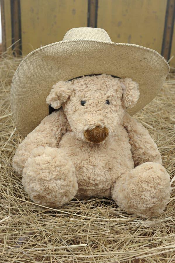 αντέξτε τον κάουμποϋ εκτάριο teddy στοκ εικόνες