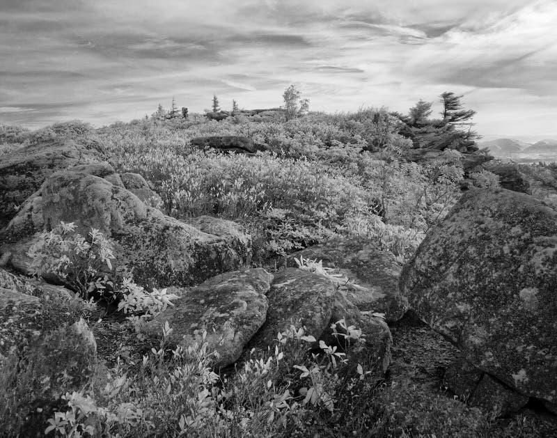 Αντέξτε τους βράχους μετακινείται τη δυτική Βιρτζίνια γρασιδιών στοκ φωτογραφία