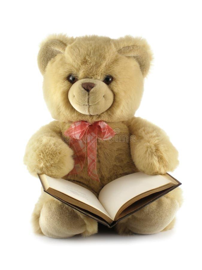 αντέξτε το βιβλίο teddy στοκ εικόνες
