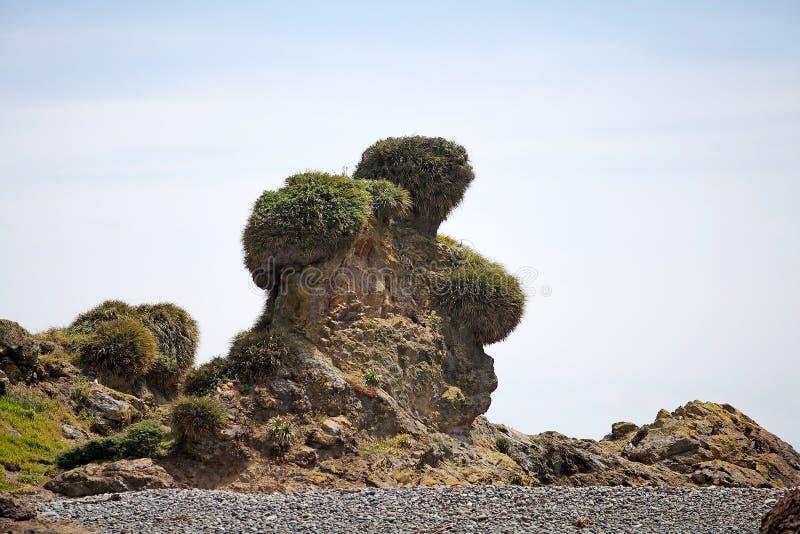 Αντέξτε το βράχο στον όρμο Punihuil, νησί Chiloe, Χιλή στοκ φωτογραφίες με δικαίωμα ελεύθερης χρήσης