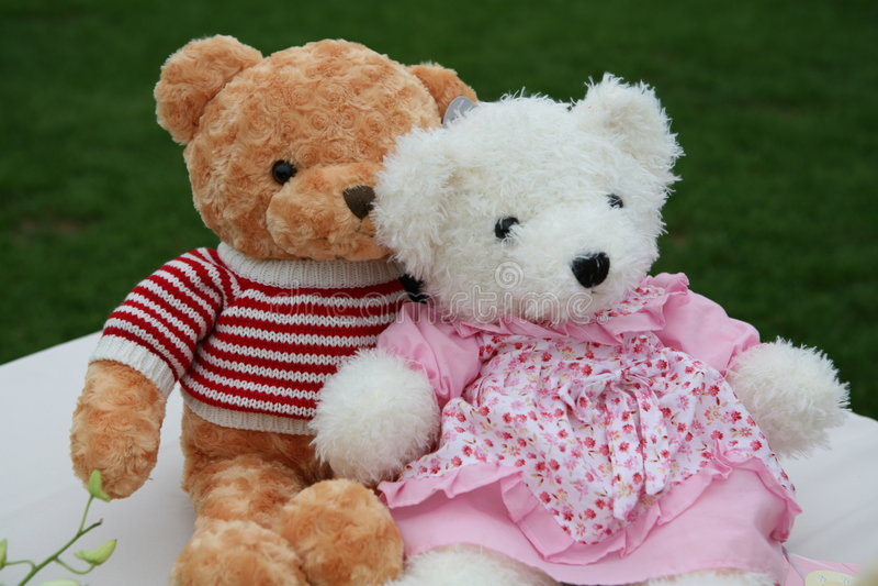 αντέχει teddy δύο στοκ εικόνα