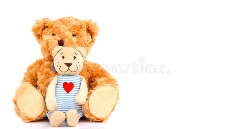 αντέχει teddy στοκ φωτογραφία