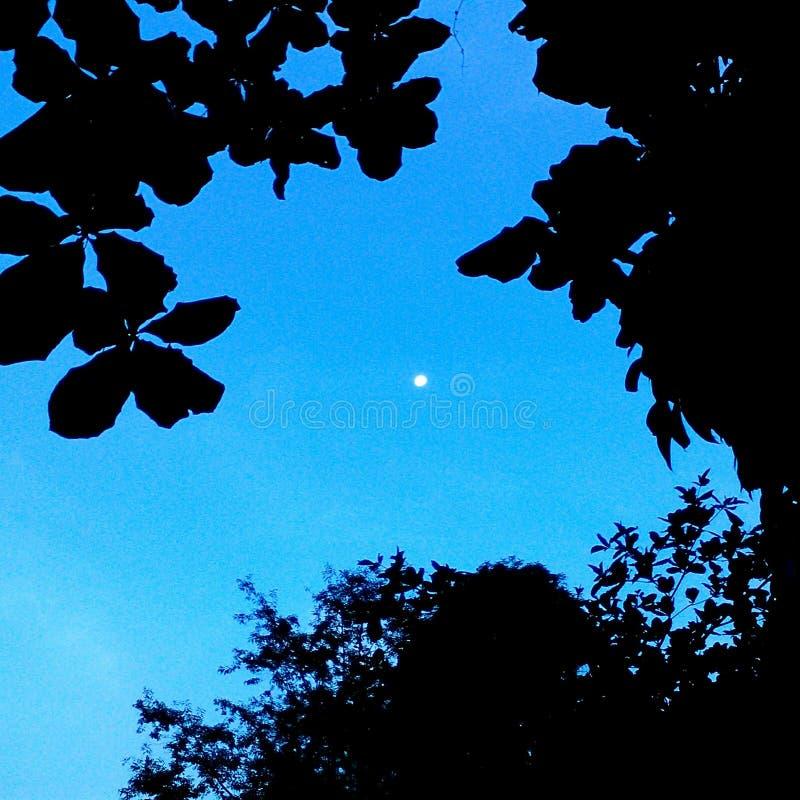 Αντίθεση ουρανού στοκ εικόνες