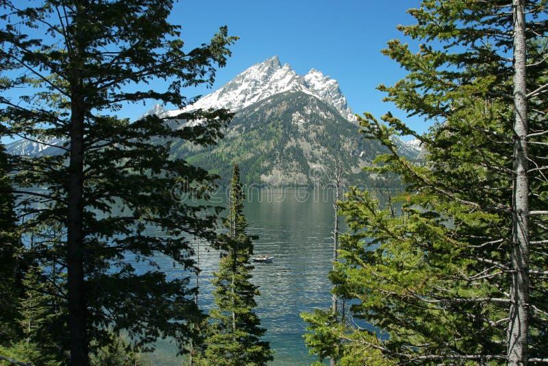 αντανάκλαση λιμνών της Jenny teton στοκ εικόνα με δικαίωμα ελεύθερης χρήσης