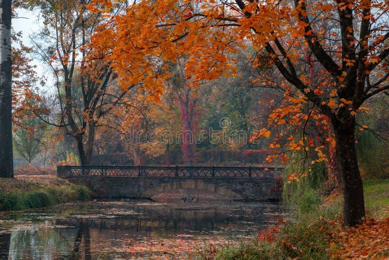 Αντανακλάσεις λιμνών του φυλλώματος πτώσης και της αρχαίας γέφυρας στοκ εικόνα με δικαίωμα ελεύθερης χρήσης
