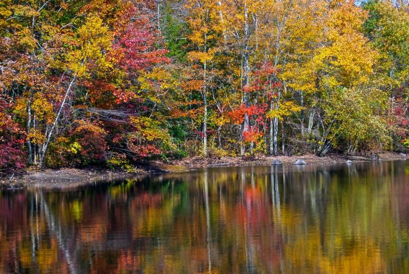 Αντανακλάσεις λιμνών φθινοπώρου στοκ εικόνες