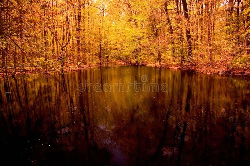 Download αντανακλάσεις λιμνών στοκ εικόνες. εικόνα από λίμνη, φθινοπώρου - 119174